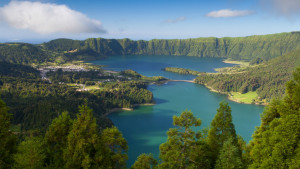 Природа Канарских островов