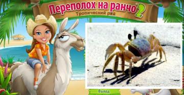 Perepoloh-na-rancho-1